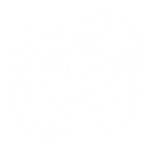 Safety Core Value Icon